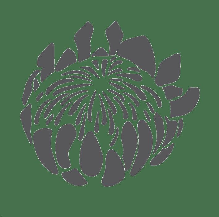 capsun-web